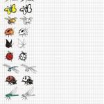 Карта для рисования насекомых