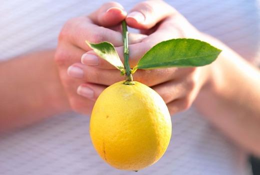 Красивый лимон в ухоженных руках