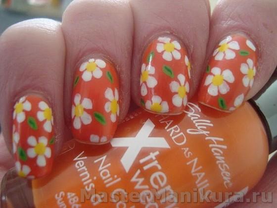 Красивые ромашки нарисованные красками
