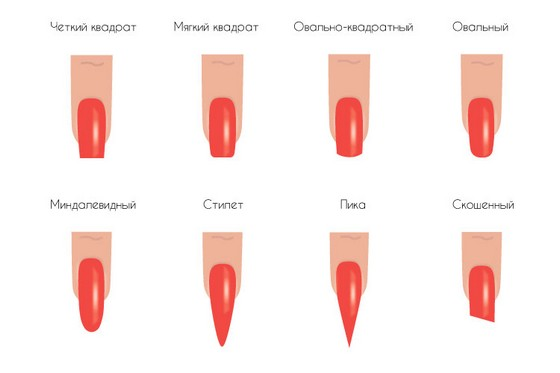 Форма ногтевой пластины